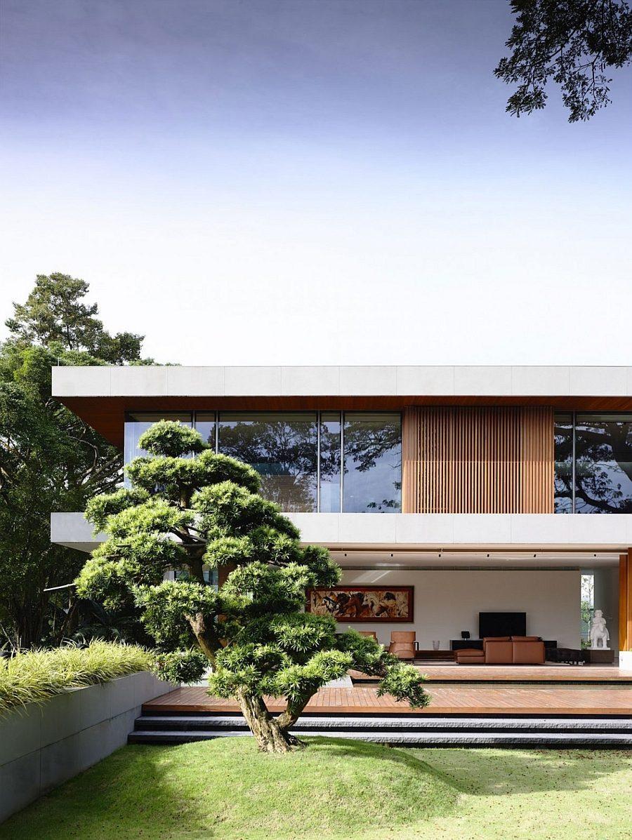 Description: Beautiful tree steals the show in the vast backyard Biệt thự tại Singapore với thiết kế không gian mở gần gũi với thiên nhiên qpdesign